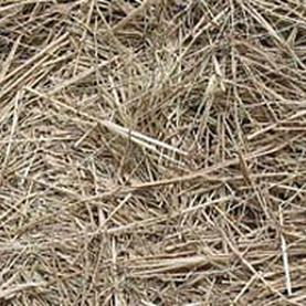 Mulching Straw